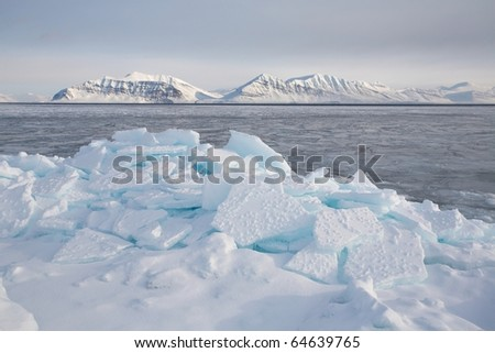 Winter Arctic landscape