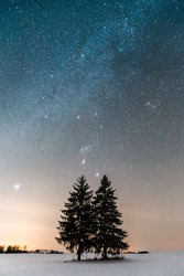 Winter astrophotography with snow. Milky way in the night sky. Starry sky and dark silhouettes of trees with Sirius star, Orion constellation. Light pollution. Lithuania, Europe. High iso pollution.