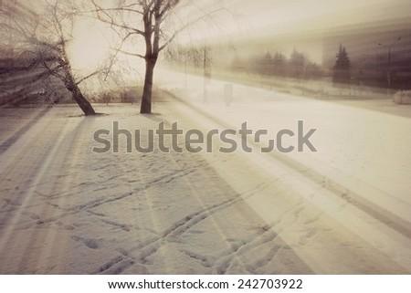 Winter background, Winter snow or Winter sun #242703922