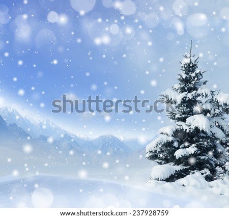 Winter background with snow and spruce - Shutterstock ID 237928759