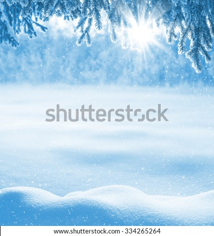 Winter background with snow-drifts and the christmas tree in frost