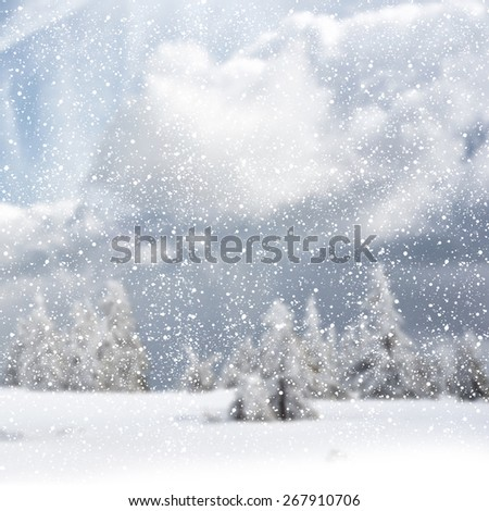 winter background with spruce tree and cottage covered by snow