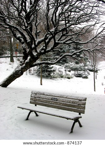 Winter bench in a park covered with snow, under a tree. Big snowflakes falling are seen at full size.