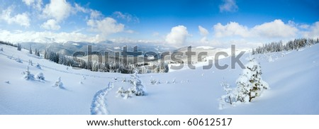 Winter calm mountain landscape with fir forest and sheds group on slope (Carpathian Mountains, Ukraine).  Three shots stitch image.