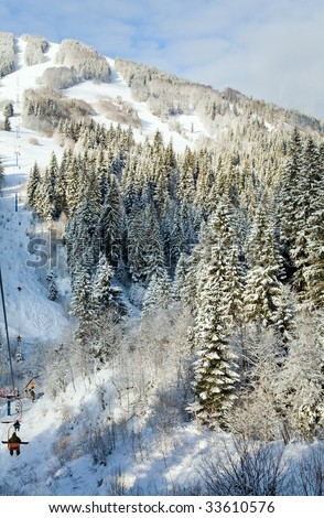 winter calm mountain landscape with snow-covered spruce-trees and ski ropeway