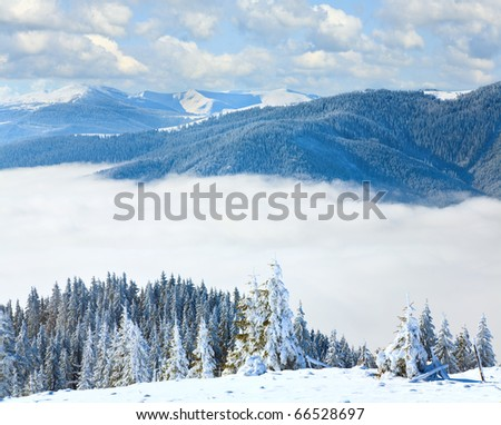Winter calm mountain landscape with snow covered spruce trees (view from Bukovel ski resort to Svydovets ridge, Ukraine). Composite image.