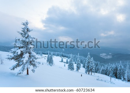 winter calm overcast mountain landscape with sheds group and mount ridge behind (Carpathian Mountains, Ukraine)