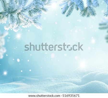 Winter Christmas background with fir tree branch \ Merry Christmas and happy New Year greeting card with copy-space.Christmas background.Winter landscape with snow and fir trees