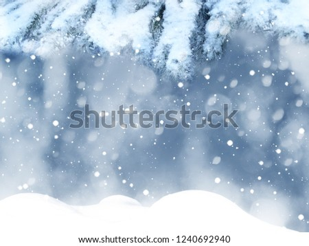winter christmas background with snow fir branches cones frozen berries #1240692940