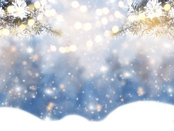 winter christmas background with snow fir branches cones on forest background