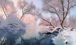 Winter Christmas Landscape In Pink Tones With Calm Winter River, Surrounded By Trees.Winter Forest On The River At Sunset. Landscape With Snowy Trees, Beautiful Frozen River With Reflection In Water