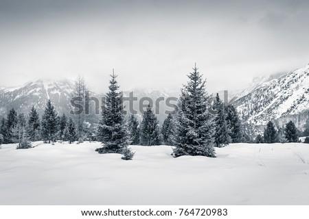 Winter Christmas mood in Val di Fassa, Dolomites, Italy #764720983