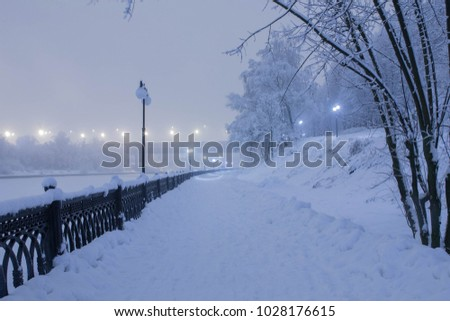 winter city park in a blizzard