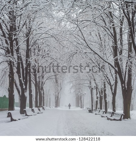 winter city park in morning
