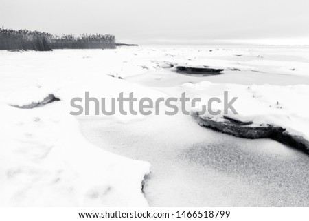 Winter coastal landscape with coastal ice. Gulf of Finland, Russia. Black and white photo #1466518799
