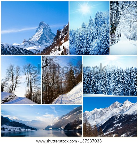 Winter collage. collection of cold weather landscapes with mountains. Trees covered with snow