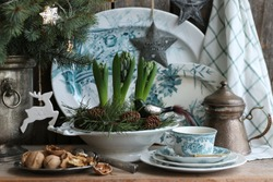 Winter composition with fresh hyacinths, moss, Christmas glass bird in antique old pedestal plate, transfer ware on aged weathered wooden background, Vintage style, holiday symbol