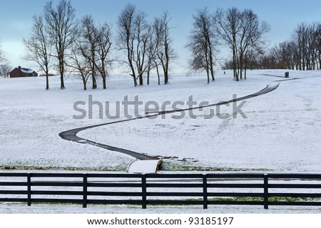Winter country scene with trees and a path.