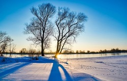 Winter dawn on an early snowy morning. Winter snow scene at dawn. Early morning in winter snow scene