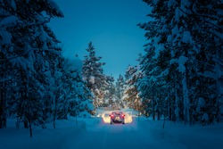 Winter Driving at night - Lights of car and winter snowy road in dark forest, big fir trees covered snow