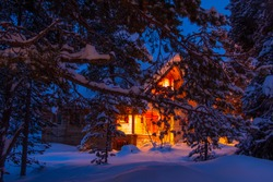 Winter evening forest. Pine branches covered with large caps of snow. Lighted cottage in the background