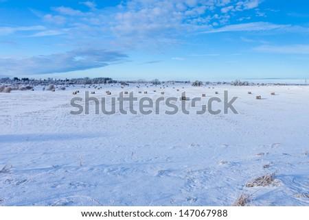 Winter farmland scenery landscape under snow