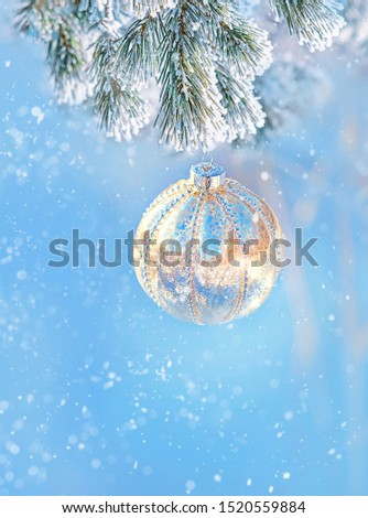 winter festive composition. Christmas and new year concept. winter holiday background. beautiful Composition with glass ball on snow fir branch. copy space. copy space