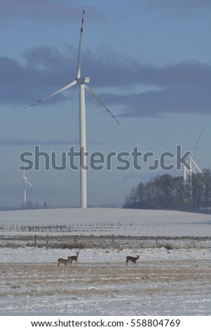 Winter field of electric turbines and deer