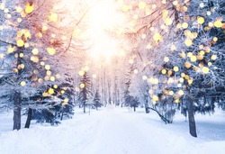 Winter fir tree christmas scene with sunlight. Fir branches covered with snow. Christmas winter blurred background with garland lights, holiday festive background.