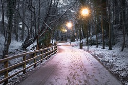 Winter footpath in St Columb's Park in Derry covered in a light dust of snow.