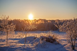 Winter forest landscape.snow-covered trees.Morning frost.Dawn in winter.Trees in the snow on the background of the rising sun