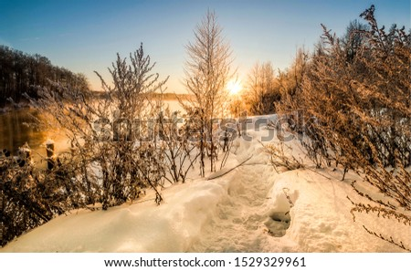 Winter forest path sunset view. Sunset winter forest path. Sunset winter snow path view. Sunset winter snow forest path scene