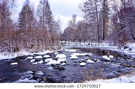 Winter forest river snow landscape