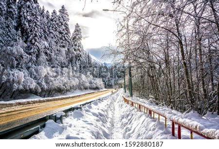 Winter forest snow road view. Forest road in winter snow forest. Winter forest road in snow. Snowy winter forest road view