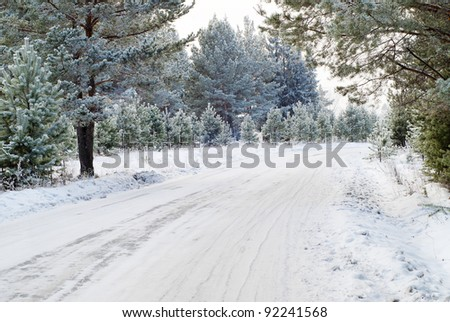 Winter forest with road