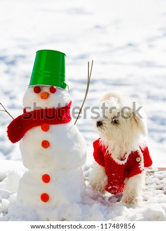 Winter friends - cute puppy playing with snowman