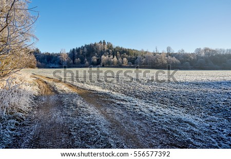 Winter frozen countryside dirt road with frozen  field trees and grass