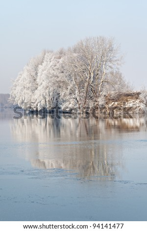 winter frozen lake and trees