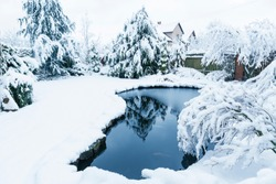 Winter garden, trees covered with snow with small lake, kingdom of winter in home garden.