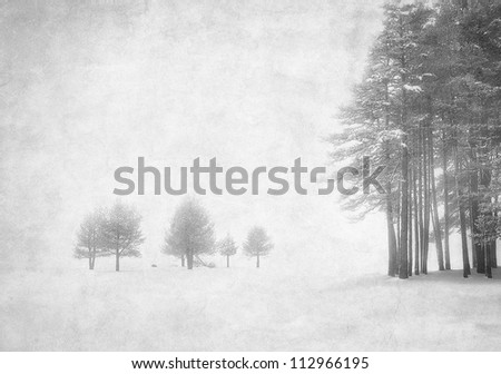 winter grunge image in black and white