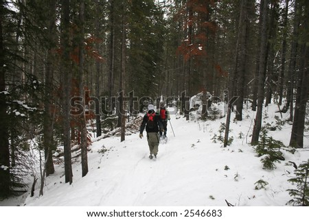 Winter hiking on a snow covered trail