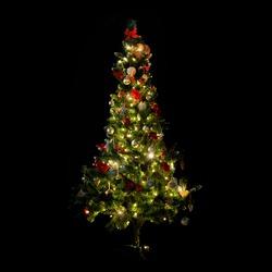 winter, holidays, decoration and illumination concept - beautiful decorated and illuminated christmas tree over black background
