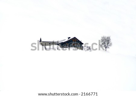Winter home with tree in snow.