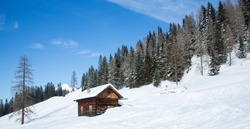 Winter house and spruce tree in a winter snowy panoramic landscape on a sunny day