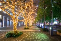 Winter illumination at Shinjuku district in Tokyo, Japan