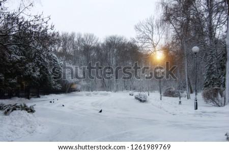 winter in belorussia #1261989769