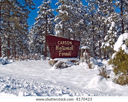 Winter in Carson National Forest