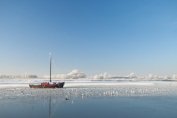 Winter in Holland. Birds on the ice and a sole boat, stuck in the ice on a frozen river. White trees in the background
