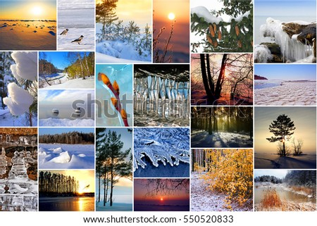 Winter in nature, Siberia, Novosibirsk oblast, Russia. A collage of photos