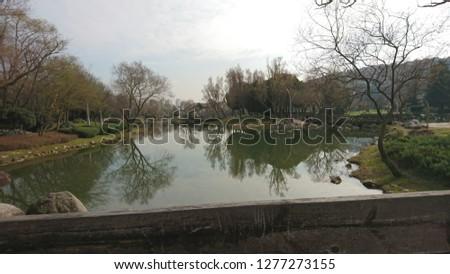 Winter in pond Stok fotoğraf ©